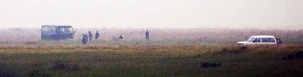 searching-in-the-fields.jpg