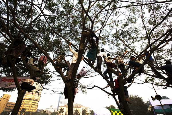 BNP supporters climb a tree to get a better view of their leader Khaleda Zia. Paltan Maidan. Dhaka. Bangladesh. 27th December 2008. © Shahidul Alam/Drik/Majority World